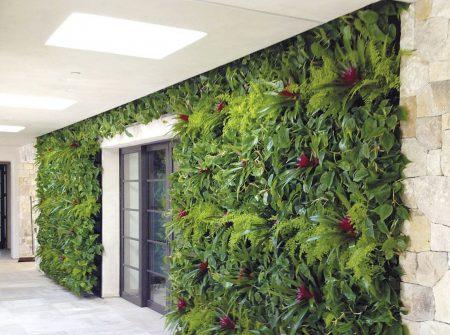 Planten Op Kantoor : Decoreer uw kantoor met een plantenwand u inrichting tips